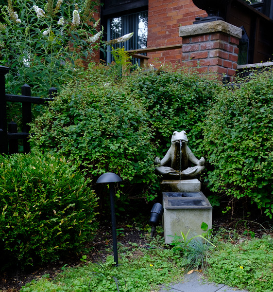 The Gardens Of Cabbagetown