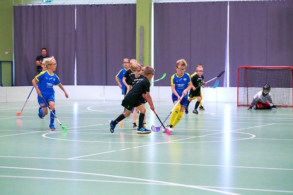 Nordic Floorball Games 2020
