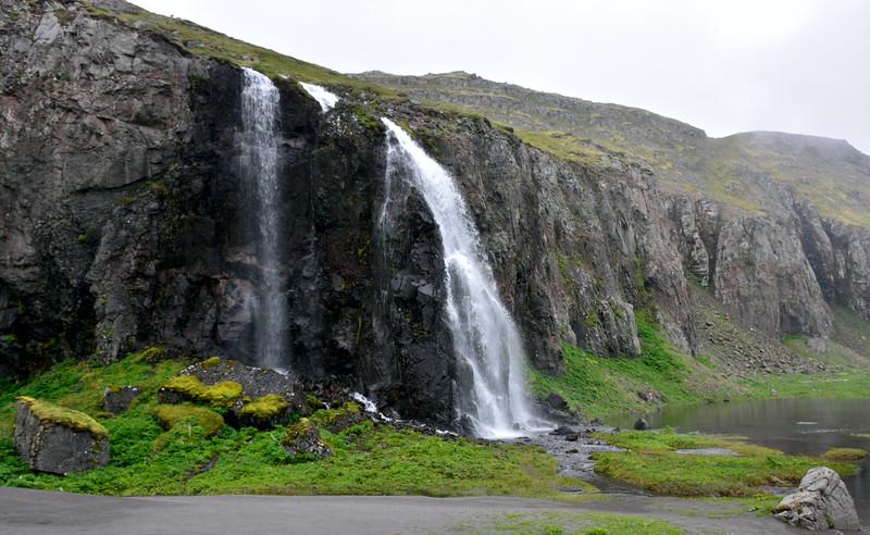 Drífandi í Hornvík
