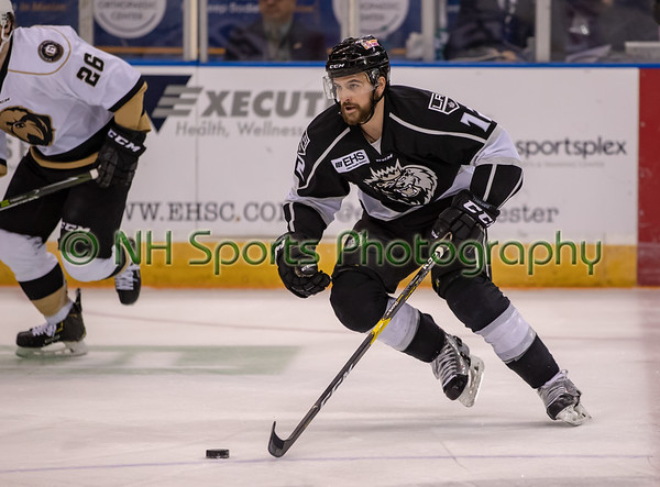 Manchester Monarchs v Newfoundland Growlers 4-30