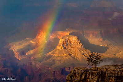2011-09-14-Grand Canyon-46____