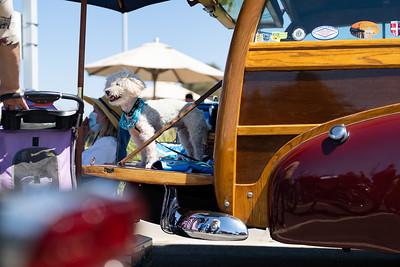 Marin Classic Car Show