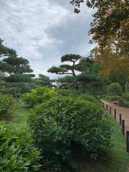 Chicago Botanic Garden 136.jpg