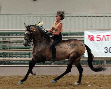 Ballet on Horseback, 2006