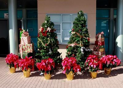 Saturday 12/24/16 Christmas Eve, Candlelight, Cake