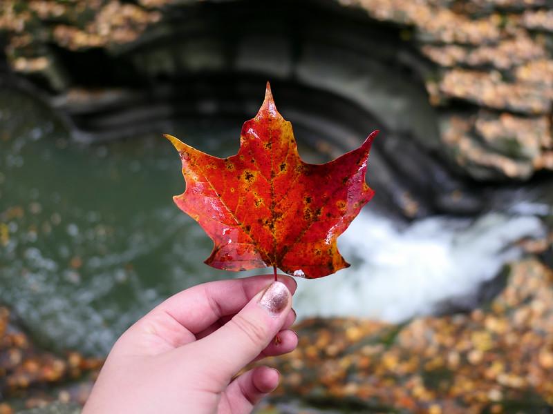 Fall colors at Watkins Glen State Park