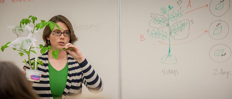 Alyssa Hakes Classroom-33.jpg