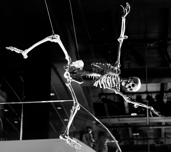 I guess this must be Tarzan's skeleton.