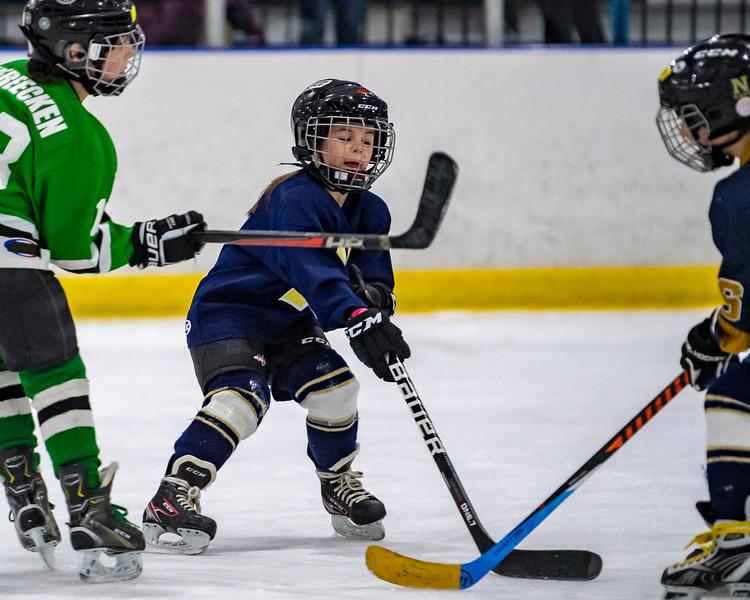2019-02-04-Ryan-Naughton-Hockey-101.jpg