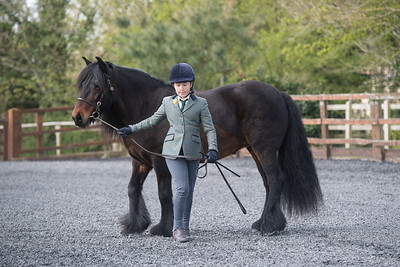Class 02 - Mares 4yrs and over
