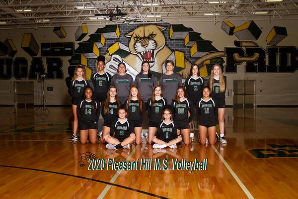 2020 volleyball