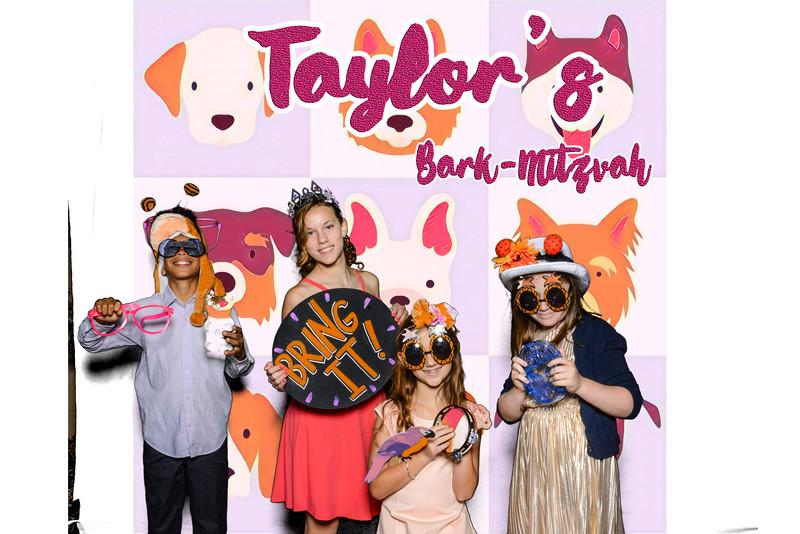 Taylors pawmitzvah-20773.jpg