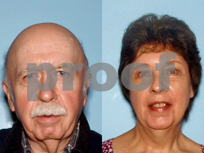 sheriff-bodies-found-in-car-of-missing-ga-couple