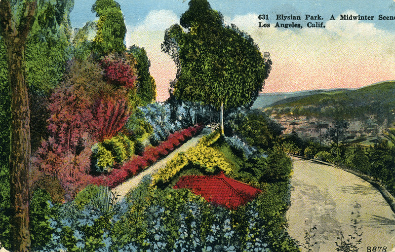 Midwinter Elysian Park Scene