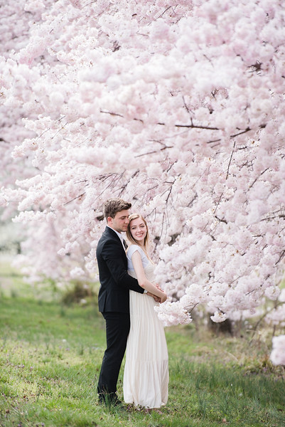 Cherry Blossoms (137 of 182).jpg