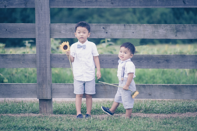 2019_07_14 Sunflower Farm-8306-Edit.jpg