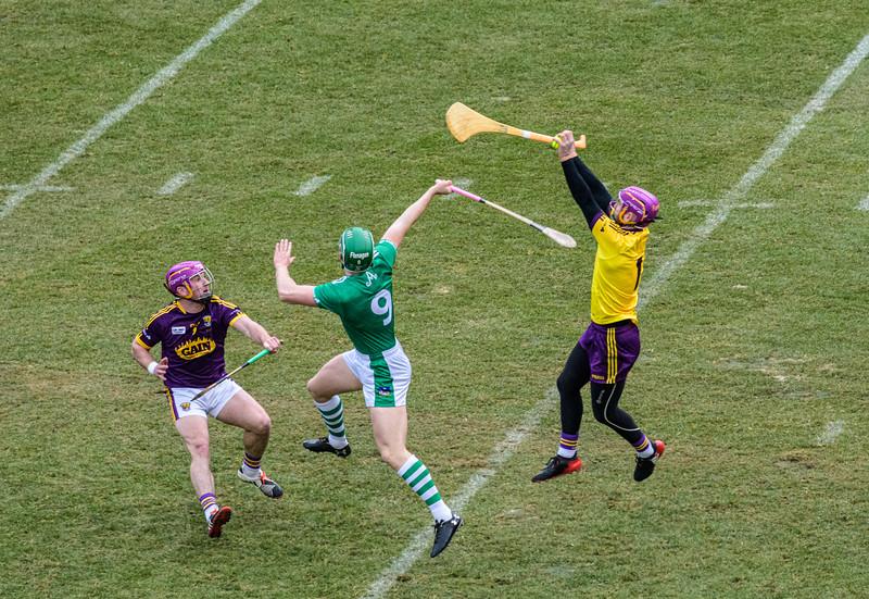 2018 Limerick vs Wexford -_8503647.jpg