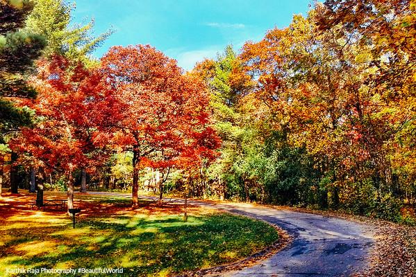 Wisconsin State Parks - Mirror Lake, Mill Bluff, Big Foot Beach, Peninsula, Sleepy Hollow