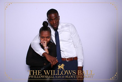 The Willows Ball 6.29.19