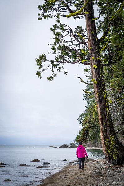 Sugar Pine Point Beach