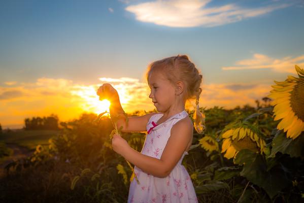 Hope - Sunflower