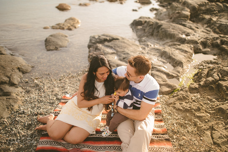 Baby Shower; Engagement Session; Mount Washington HCP Gardens; Chinese Village; Victoria BC Wedding Photographer-144.jpg