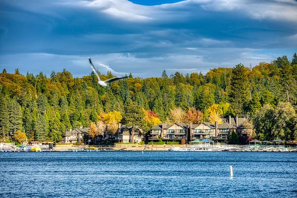 Lake Arrowhead,Ca