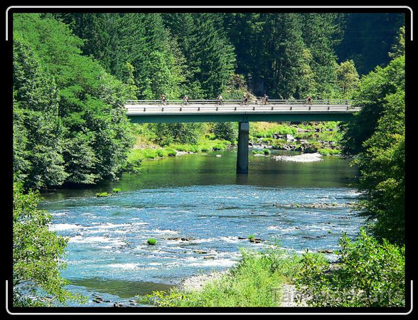 Because a couple of short parts of the Umpqua River trail are closed to bicycles, we did have a couple of quick sections on the road.