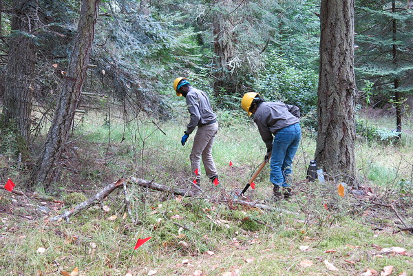 Northwest Youth Corps on Henry Island