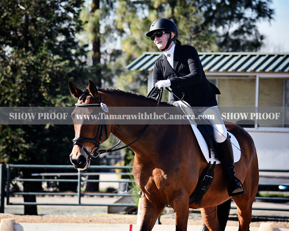 2019 Dressage Shows