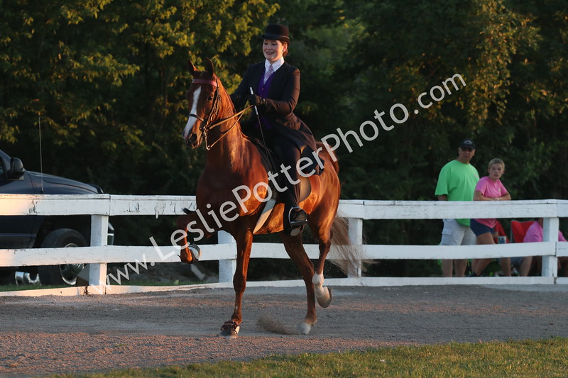 Class 13: Bluegrass Select Series American Saddlebred Five-Gaited Show Pleasure