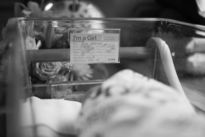 Rose_Maternity-44.jpg