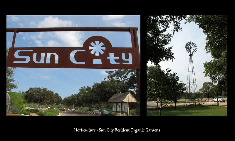 19-Sun City Gardens.jpg