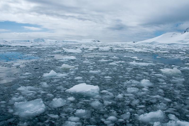 Floating ice in Pleneau Bay