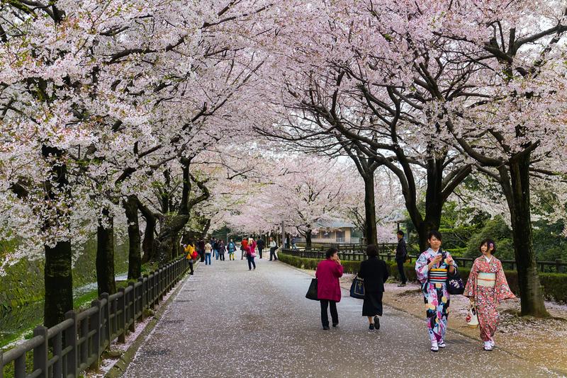 Kanazawa Castle. Editorial credit: Sexmidnight / Shutterstock.com