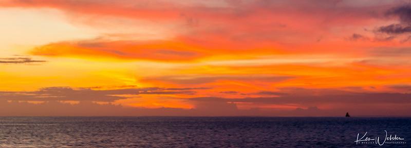 2018 Lobos Island-49.jpg