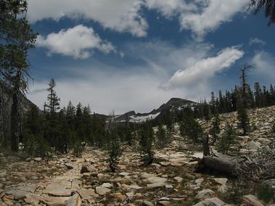 Lyons Creek Trail - June 20, 2009
