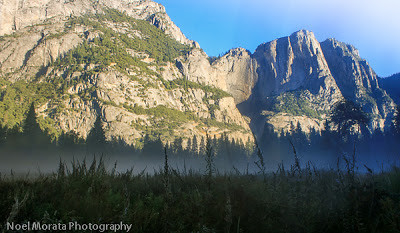 Fog drifting over the Yosemite Valley with mountains rising behind.