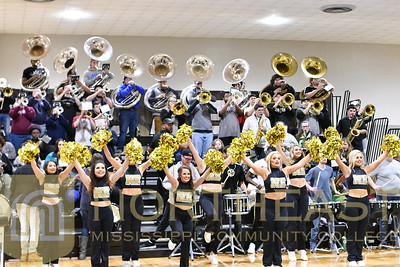 2019-01-22 BAND Pep Band at Basketball Game