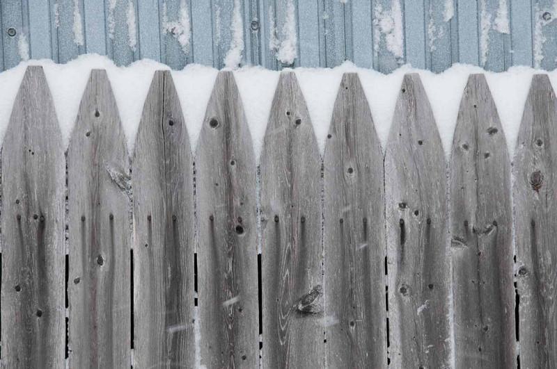 snowy-fence.jpg