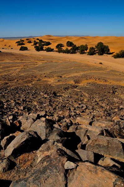 Day4-Sahara-26.jpg