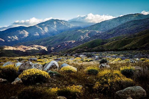 Natural Landscapes