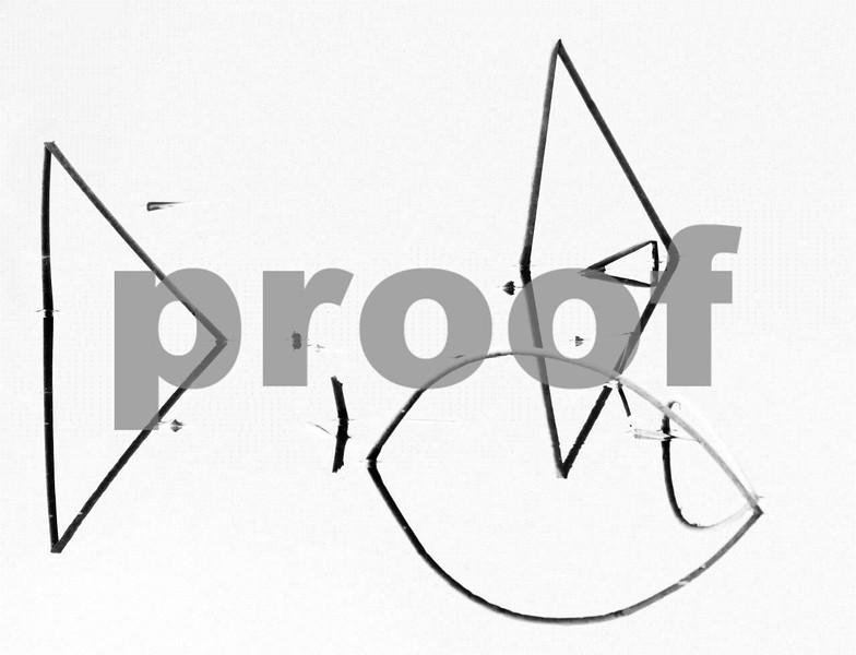 Cat fish tails #3 8896 b&w.jpg