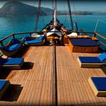 sun deck web.jpg.jpg
