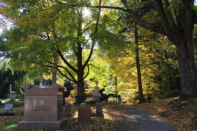 Fall Foliage Boston - October/November  2010