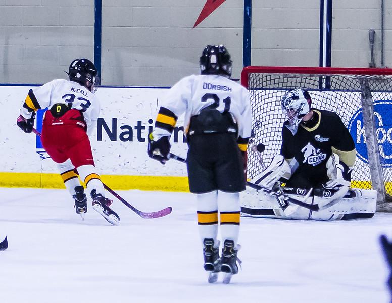 Bruins-256.jpg