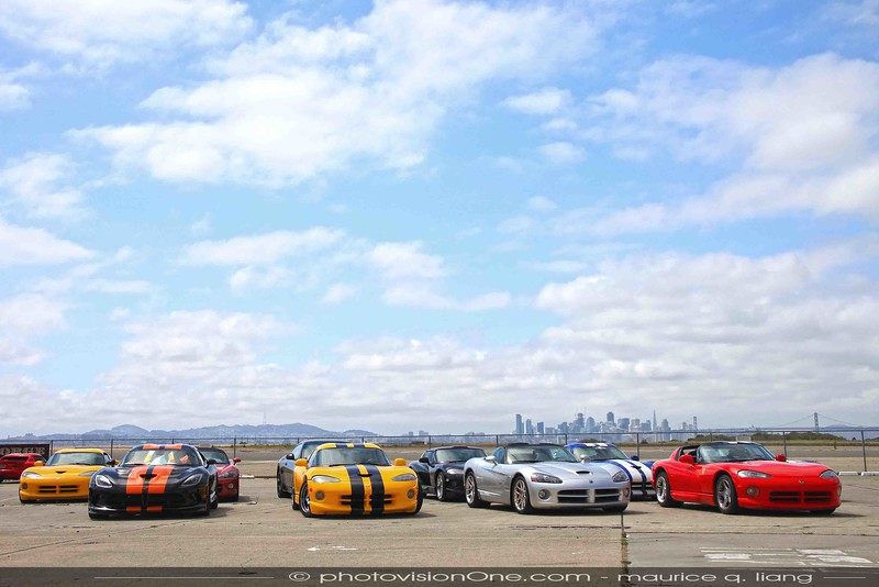 Vipers with San Francisco skyline.