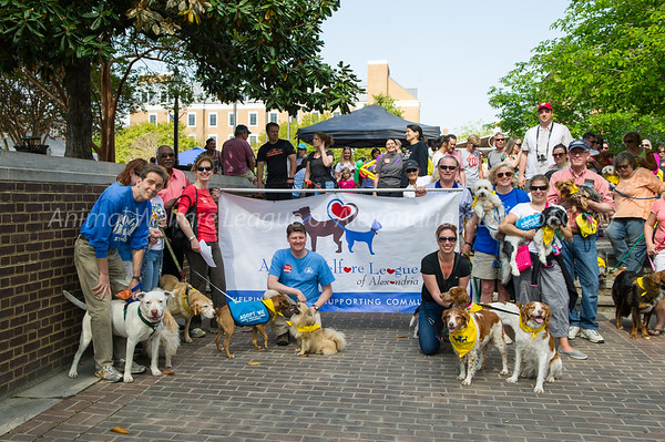 2015 Walk for the Animals
