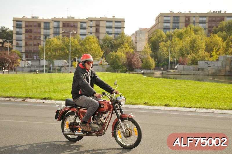 ALF75002.jpg