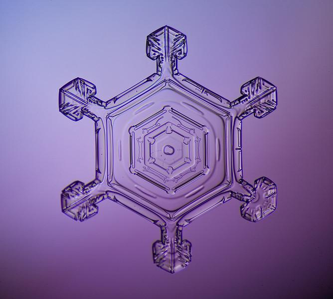 snowflake-0252-Edit.jpg